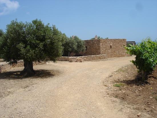 Entrada a Bodega Cap de Babaria (Formentera)