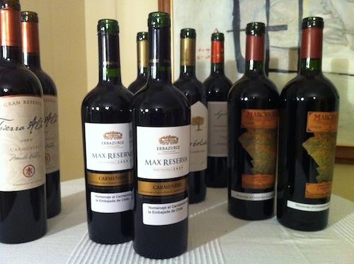 Carménère, vinos de Chile