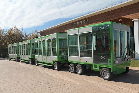 Paseo en tren eléctrico-solar de Bodegas Torres