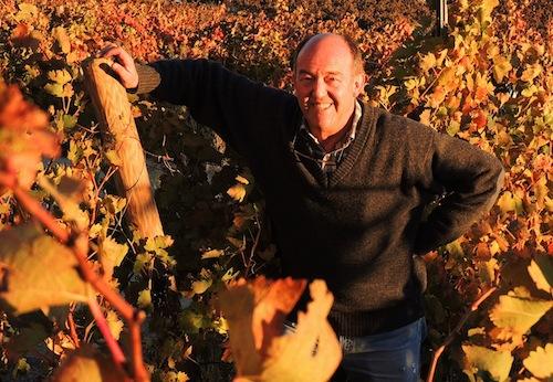 Basilio Izquierdo en las viñas