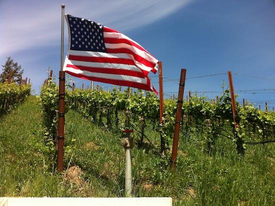 Estados Unidos y el vino