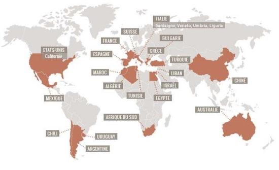 mapa-garnachas-mundo