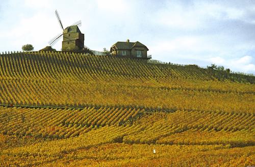 Champagne Patrimonio de la Unesco