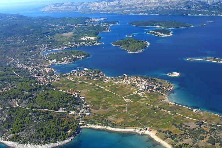 Vinos y viñedos en la isla Korçula-Croacia (video)